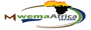 Mwema Africa Safaris
